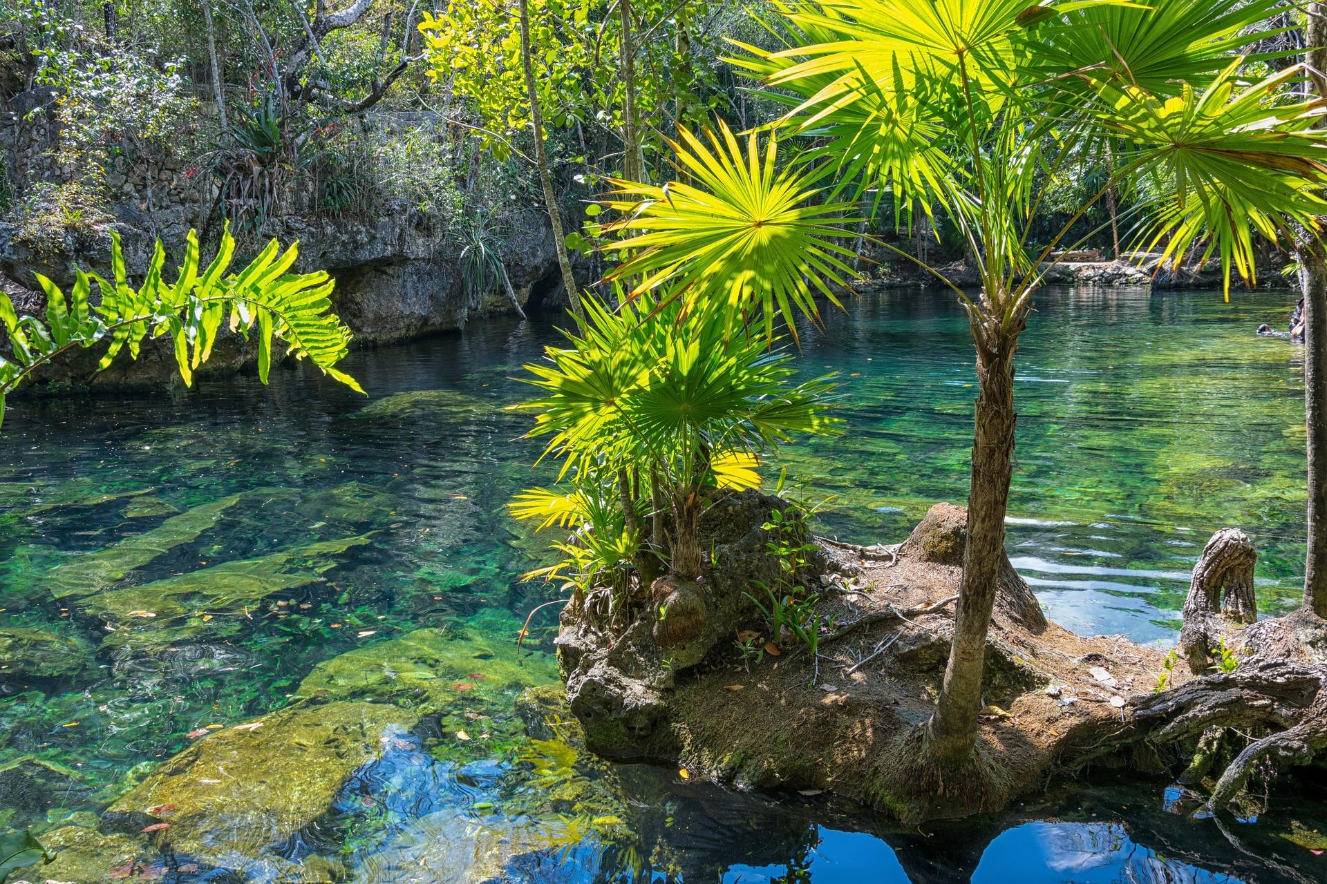 Mexique: ISTO Amériques ouvre le Forum du Tourisme Durable et Accessible
