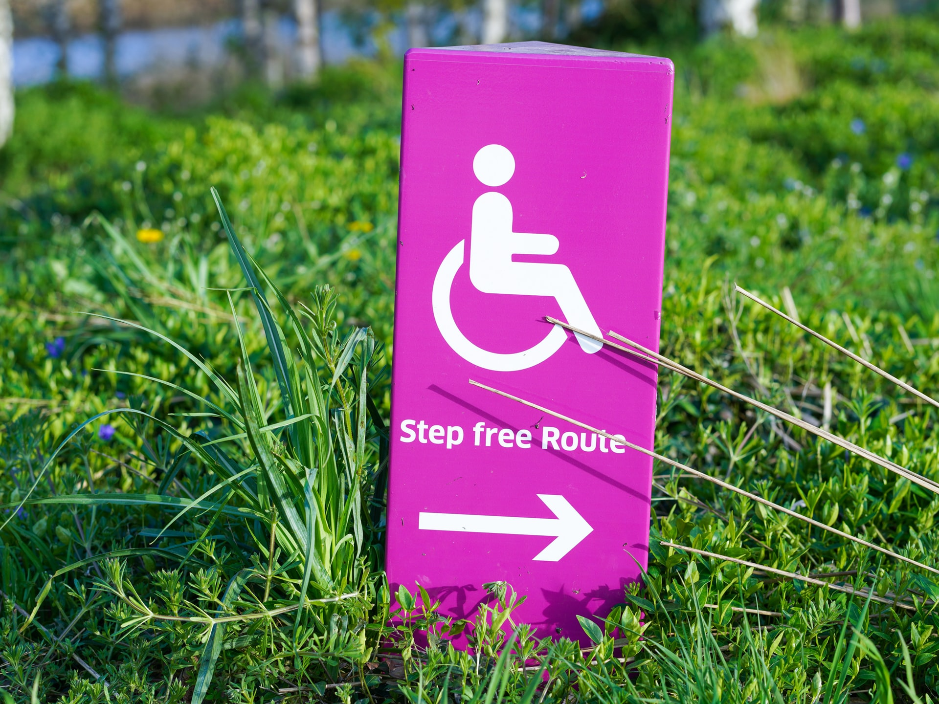 Step free route sign in grass